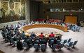 Comunicado de prensa del Consejo de Seguridad de la ONU  sobre Colombia