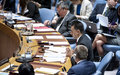 Security Council members back second UN Mission