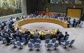 Declaración de prensa del Consejo de Seguridad sobre Colombia.