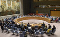 UN Security Council Press Statement on Colombia