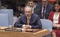 Declaración al Consejo de Seguridad del Representante Especial del Secretario General y Jefe de la Misión de Verificación de la ONU en Colombia, Jean Arnault.