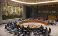 Security Council Press Statement on Colombia - SC/13988