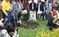 'Un tinto por la paz': La semilla que dio origen al Café de La Esperanza en Cauca.