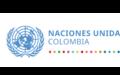 Sistema de Naciones Unidas en Colombia y la Misión de Verificación de Naciones Unidas con ocasión del Día Internacional para la Eliminación de la Violencia Contra las Mujeres y Niñas.