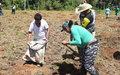 Cultivar reconciliación para cosechar paz: cómo avanzan los proyectos productivos en Buenavista, Meta